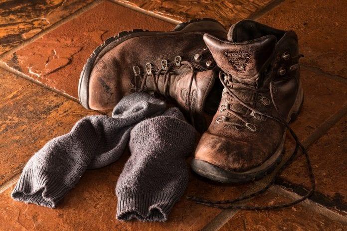 Best Survival Socks