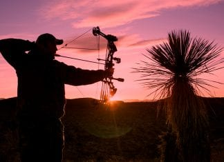6 Best Hunting Bows under $1000