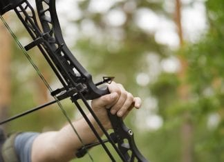7 Best Single Pin Bow Sights