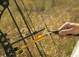 Diamond Infinite Edge Pro Compound Bow Review: Is it Worth Buying?